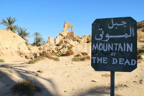 egypte wadi siwa